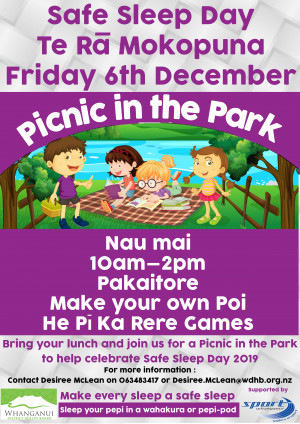 Safe sleep picnic in the park poster